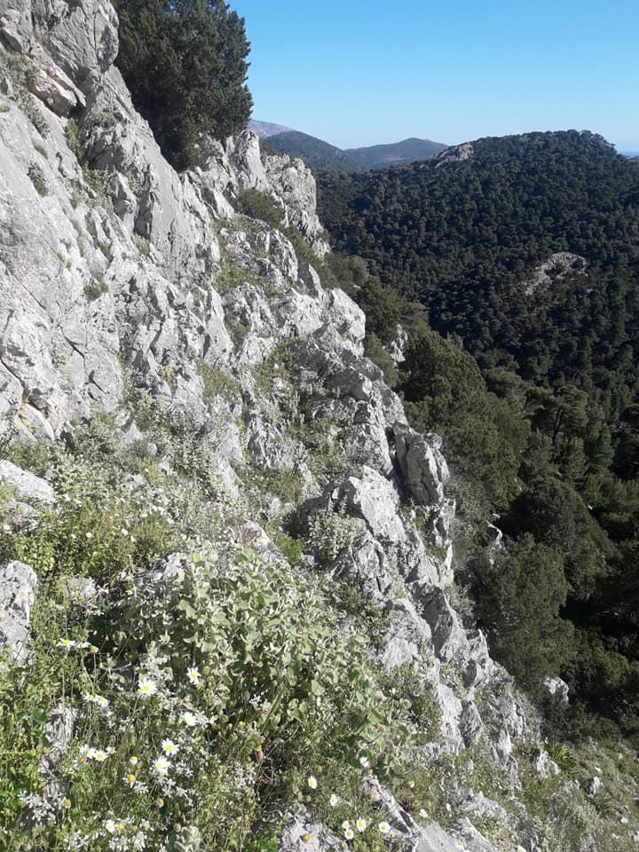 Θέα από Άγιος Αντώνιο, Καλογιερατση