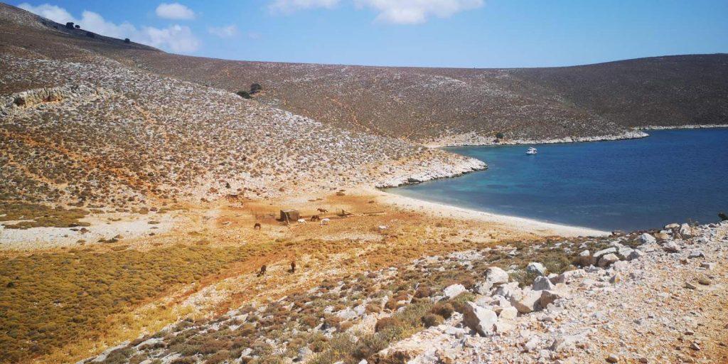 Παραλία Ρένες