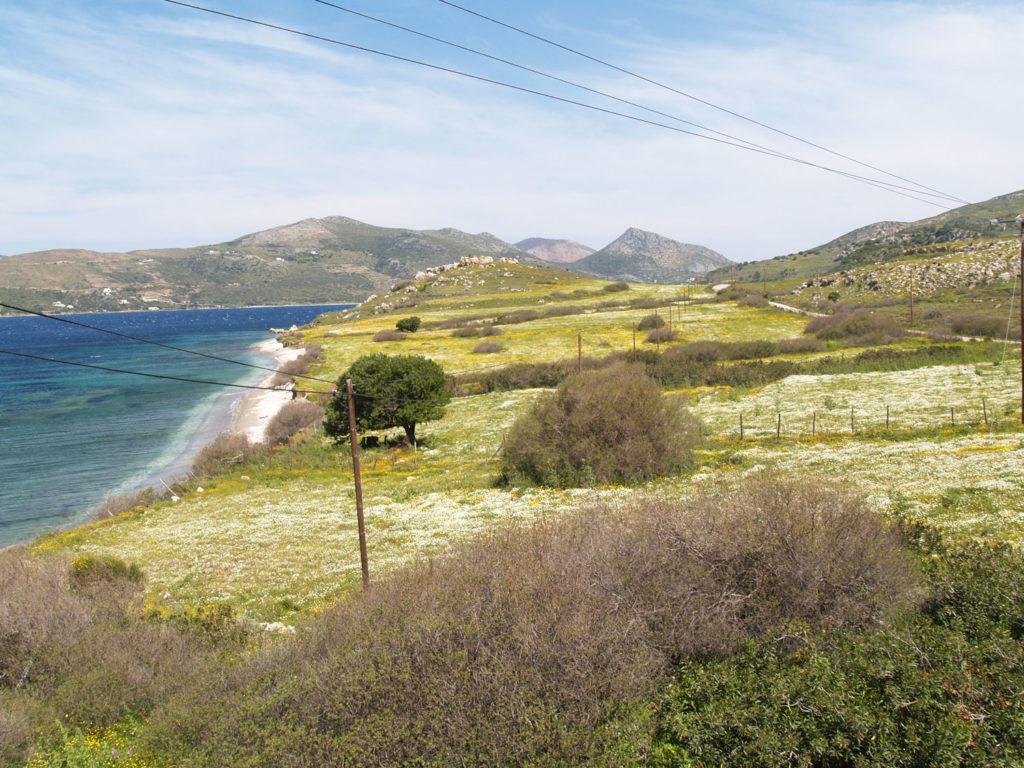Παραλία Δχούνια